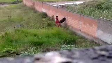 Hyderabad college couple outdoor sex caught on hidden cam